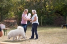 Rally Obedience Turnier (16.09.18)
